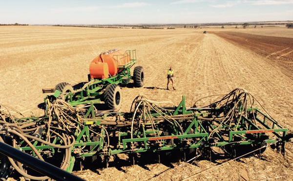B. Mott set up in field